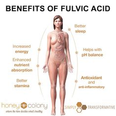 How You Can Raise Your Health and Consciousness with Fulvic Acid | Stillness in the Storm