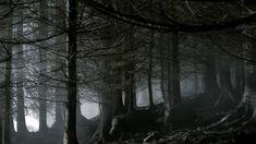 "#Outlander season 1x04 ""The Gathering"" Landscape Still"