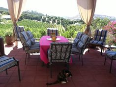 How about a view like this for an intimate wedding?  Altipiano Winery in Escondido area. :D!  We love.
