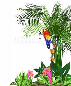 Clip Art Rainforest Clip Art jungle trees clip art tropical rainforest cartoon border leaves art