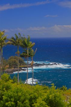 Visiting Hawaii? 10 Must Knows Before You Go….Tip #9