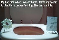 Very thoughtful Fish Funeral.  I laughed at this, but also appreciate the effort... :)