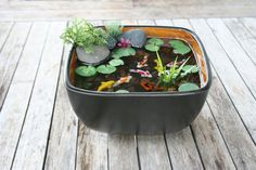 Miniature Koi Pond in Resin by rezinology on Etsy, $40.00