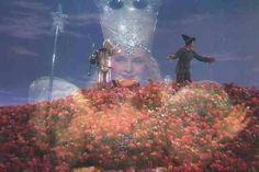 Glinda and Poppies