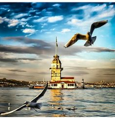 Istanbul City, Istanbul Turkey, Beautiful Places In The World, Wonderful Places, Cool Photos, Beautiful Pictures, Landscape Photography Tips, Turkish Art, Pictures To Paint