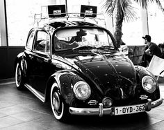 Beetle from ultimate dubs 2014