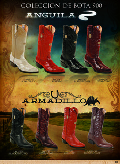 Eel and Armadillo skin boots for sale for men and women. DNABoots@gmail.com Armadillo, Boots For Sale, Cowboy Boots, Shoes, Women, Fashion, Boots, Moda, Zapatos