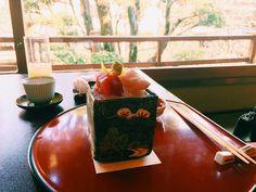 Beautiful Tofu House Kaiseki Menu. #Tokyo #Kaiseki #delicious #yum #sashimi #pure #fresh #beautiful #taste #love #food #foodporn #instayum #travel #traveling #traditional #art #foodart #mustvisit #eat #traditional #restaurant by crystaltong