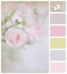 Delicate Rose - Pastel, toffee, blue, pink, yellow, golden, lilac, green, pale Designcat Colour Inspiration Board