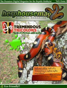 HerpHouseMag Cover of Volume 4 Issue 2 House And Home Magazine, Amphibians, Cover, Animals, Animales, Animaux, Blankets, Animal, Animais