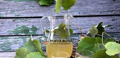 Cum se face vinul acasa, reteta simpla, traditionala Herbs, Plants, Food, Wine, Herb, Flora, Meals, Plant, Yemek
