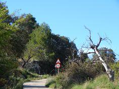 Sierra d'Aixorta