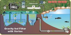 At Kockney Koi we have multiple guides to show how to setup a pond correctly. Basic filter types shows gravity fed vortex systems and their setup.