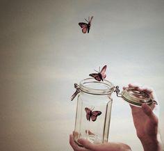 un lâché de papillons, tellement romantique