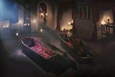 加門七海(@kamonnanami)さん | Twitter トランシルヴァニアのお城でドラキュラと一緒に(一緒?)10/31だけ泊まれる、予約は10/26まで メッチャ山奥だな〜 棺の中で眠れるらしいよ https://www.airbnb.fr/night-at/dracula …