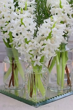 FLOWERS by ingrid & titti - White Flowers for the New Year. © Ingrid Henningsson/Of Spring and Summer - White tulips, hyacinths and rosemary.