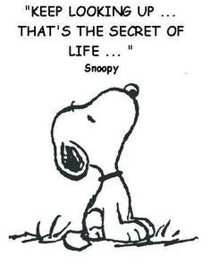 ᐅ I Miss You images, greetings and pictures for WhatsApp (Page Peanuts Snoopy, Peanuts Cartoon, Love Ecards, Miss You Images, Healing Hugs, Keep Looking Up, Snoopy Pictures, Emoji Pictures, Quote Pictures