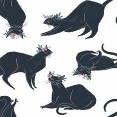 Dear Stella - Rae Ritchie - Magik Collection - Cat Magik in White by Bobbie Lou's Fabric Factory