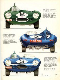 SlotForum -> Cars in profile - Jaguar D-type pt 2