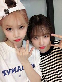 Kpop Girl Groups, Kpop Girls, My Girl, Cool Girl, Bestest Friend, Japanese Girl Group, Recent Events, Blackpink Jisoo, Extended Play