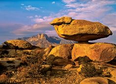 Guadalupe Mountains National Park. (Photo by Tim Fitzharris)