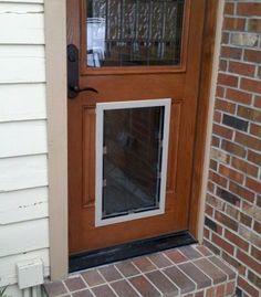 New Entry Doors with Doggie Doors Built In