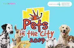 Event: Pets in the City 2019 – Dublin Local Events, Dog Show, Health Advice, Pet Health, Pet Accessories, Four Legged, Dublin, Dog Training, Dog Cat