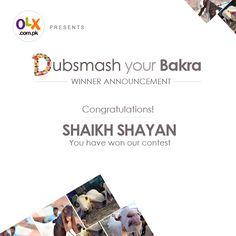 Congratulation Shaikh Shayan!