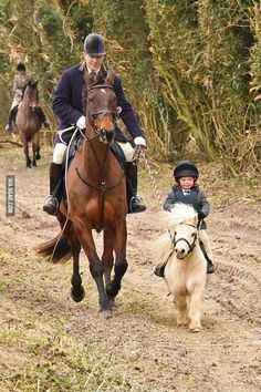 Smallest pony I've seen - 9GAG