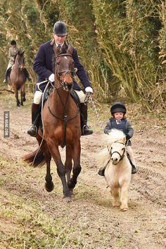 Smallest pony I've seen - 9GAG