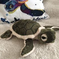 We have a turtle friend for you! Our plush sea turtle hatchling, Baby Shelly!Recycled Plastic Poly FillRecycled Silicate PelletsRecycled Sew LabelsOur hatchling is in size. A portion of each sale goes directly to seaturtlehospital. Sweet Turtles, Baby Sea Turtles, Shelly Cove, Sea Turtle Gifts, Save The Sea Turtles, Turtle Plush, Turtle Pond, Turtle Pattern, African Cichlids