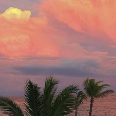 Imagem de sky, sunset, and palms Nature Aesthetic, Beach Aesthetic, Beautiful World, Beautiful Places, Wow Photo, Pretty Sky, Aesthetic Pictures, Mother Nature, Aesthetic Wallpapers