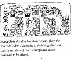 6-These images are from the well researched book, The True History of Chocolate by Sophie and Michael Coe published by Thames & Hudson