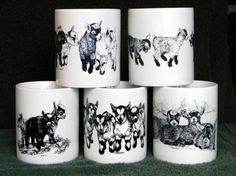 Hey, I found this really awesome Etsy listing at https://www.etsy.com/listing/257506576/mug-special-2-any-four-11-oz-pygmy-goat