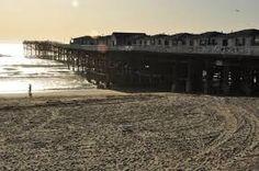 Resultado de imagem para Praia San Diego Ca