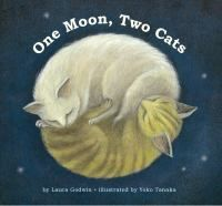 One moon. Two cats are not asleep. Across a great distance, but under the light of the same moon, a city cat and a country cat pounce and play, crouch and leap in a rollicking nighttime adventure. When morning comes, they are both back in their respective homes and finally, turn in to sleep.