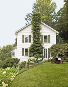 The landscape designer of this Connecticut home trained Hydrangea petiolaris to ., The landscape designer of this Connecticut home trained Hydrangea petiolaris to …, White Farmhouse, Country Farmhouse Decor, Farmhouse Style, Country Living, Hydrangea Petiolaris, Green Shutters, Farmhouse Landscaping, White Houses, Artisanal
