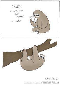 Sloth Instructions...