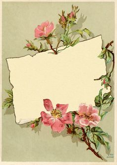 Vintage Rose Frame Images - The Graphics Fairy Vintage Labels, Vintage Ephemera, Vintage Cards, Vintage Postcards, Vintage Stuff, Papel Vintage, Vintage Paper, Graphics Fairy, Rose Frame