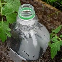 This is an Irrigation idea using a recycled bottle.  Great if you are going out of town and need to protect your plants.  Brilliant Idea!!!!