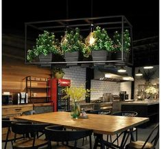 This stunning wrought iron planter hanging light is the perfect piece for a large space! Made from metal with an iron finish. Measures x Power Source: AC Voltage: 90 - Light bulbs not included. Black Chandelier, Led Chandelier, Chandelier Planter, Decoration Restaurant, Home Decoration, Deco Led, Iron Plant, Modern Planters, Decoration Inspiration
