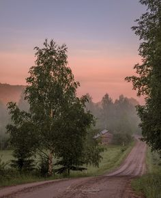 Country road in the morning mist (Finland) by Asko Kuittinen