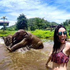 """Chiang Mai, Thailand @sheyfm - """"Spending and amazing day with these lovely guys  #Backpackerstory #backpacker #travel #destination"""