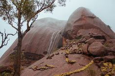 uluru | Tumblr Litchfield National Park, Alice Springs, Small Lake, Beautiful Scenery, Newcastle, National Parks, Water, Places, Lugares