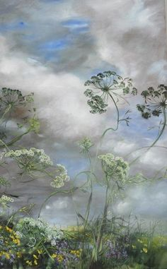 CLAIRE BASLER: