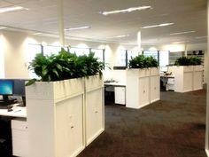 Cabinet Planters by Paul Pph on 500px#planthire #sydney #plantrental #indoorplanthire #office planthire