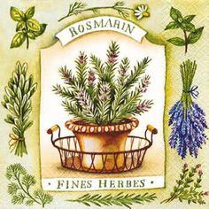 Especiais - Especialidades francesas. Bouquet garni e Ervas finas (fines herbes). - Bem Feitinho