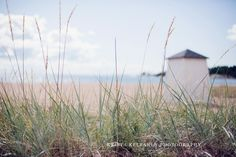 Krista Keltanen photography Archipelago, Finland, Beach House, Mountains, Photography, Travel, Blog, Beach Homes, Photograph