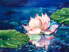 """Morning Reflections Original watercolor painting titled """"Morning Reflections"""" of a water lily flower floating on the reflective waters painted here on Maui. Water Lilies Painting, Lotus Painting, Lily Painting, Watercolor Water, Watercolour Painting, Watercolor Flowers, Watercolors, Lotus Kunst, Lotus Art"""