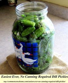 Easiest Ever, No Canning Required Dill Pickles #homemadepickles